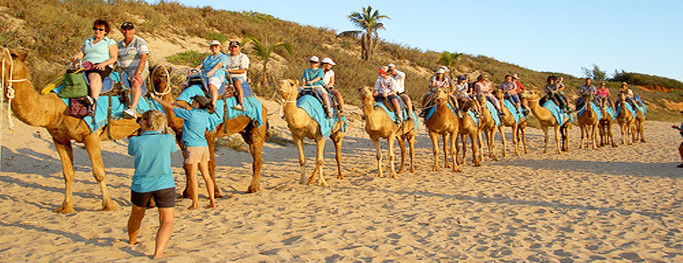 group-tour-Rajasthan