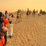 Desert Safari Tour in India