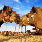 The Golden Triangle Tour with Pushkar Fair festival