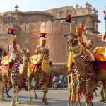 Fair & Festivals In Rajasthan