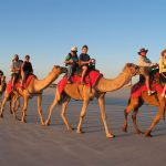 Thar Desert – Desert Safari Tour in India