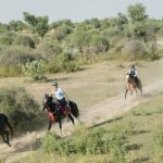Adventures Safari In Rajasthan