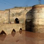 Bharatpur : Le attrazioni della fauna selvatica in città