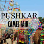 Pushkar Camel Fair : Arguably The World's Largest Camel Fair