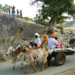 Visit Rural Side Of Rajasthan