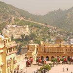 A Brief Guide of Rajasthan Wildlife Safari Tour