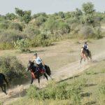 Adventures Safari In Rajasthan