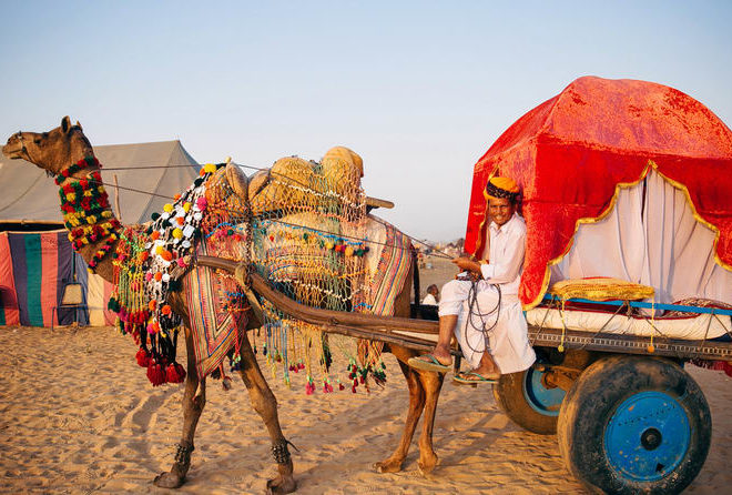 Image result for Rajasthan adventure
