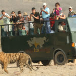 Obtén Turismo Aventurero con The Tiger Safari Ranthambore