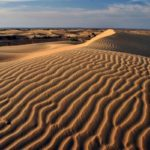 Spend A Night In Thar Desert Rajasthan