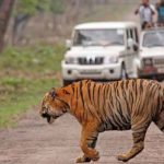 Jaipur – Ranthambore Tour Package