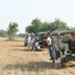 Adventures Activities In Rajasthan