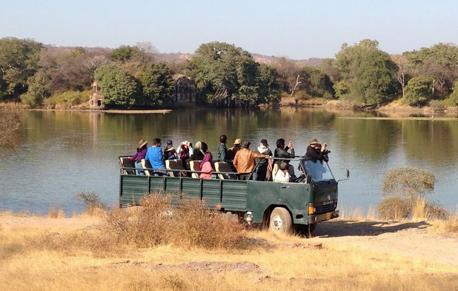 Canter Safari Ranthambore