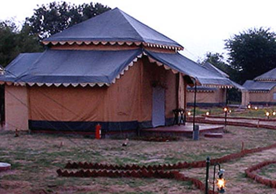 Orchard Camp Resort Pushkar