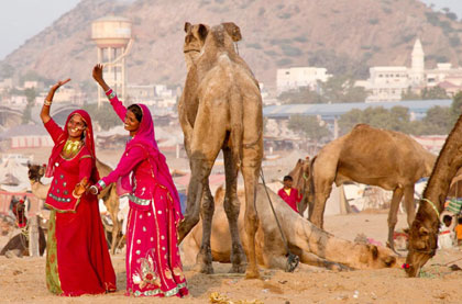 Jaipur Pushkar Taxi Package